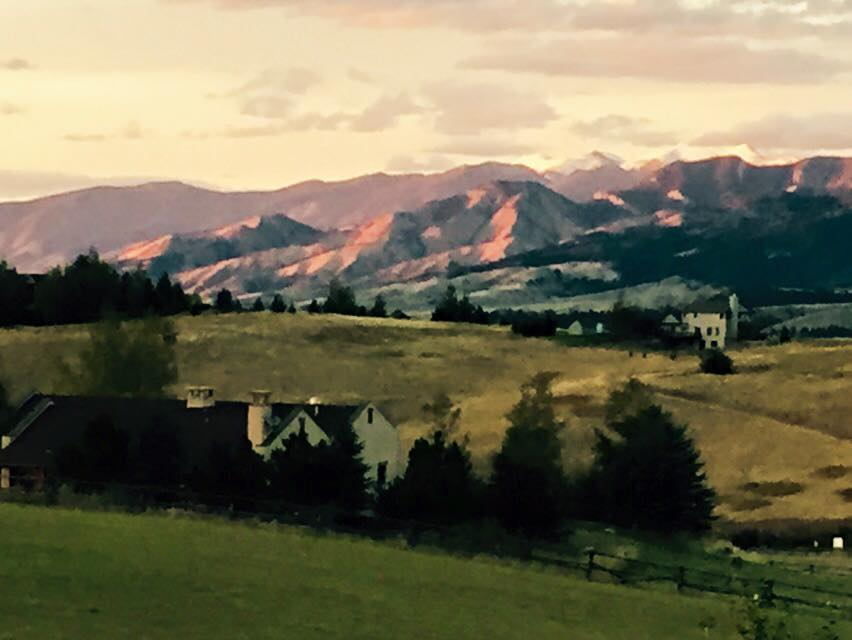 Backyard view in Bozeman
